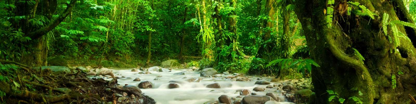 Costa Rica Immobilien - Büros, Bauflächen, Hotels - Bauen, Investieren, Mieten