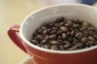 Italienischer Kaffeegigant akquiriert Großrösterrei in Costa Rica